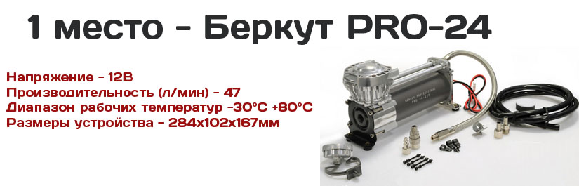 беркут про 24
