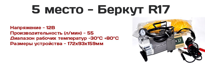 беркут р17